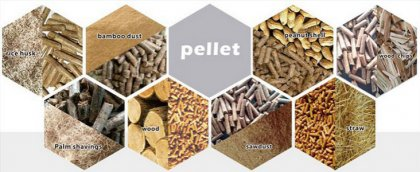 How to Choose the Right Type of Biomass Fuel?