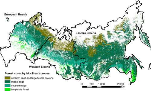 Russia forestry resources coverage