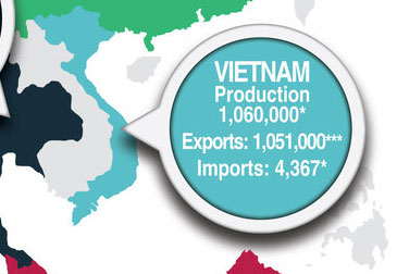 Vietnam wood pellet production and exports