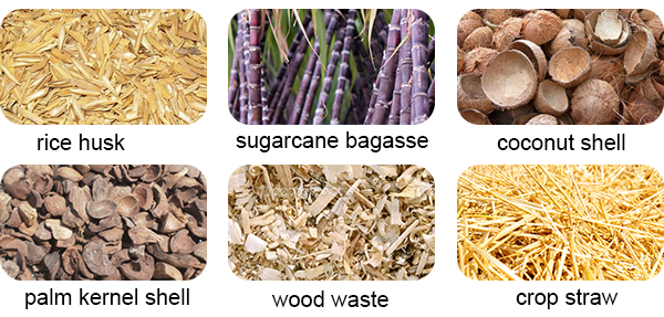 biomass materials in Indonesia