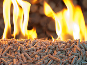 rice husk pellets burning